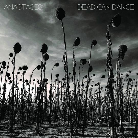 deadcandanceanastasis