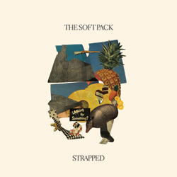 thesoftpackstrapped
