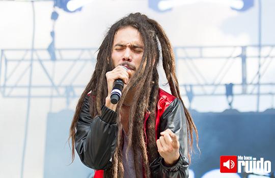 Lion-Reggae-1
