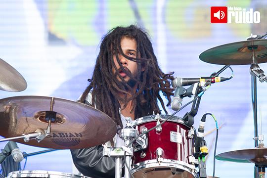 Lion-Reggae-2