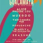 guacamaya-festival