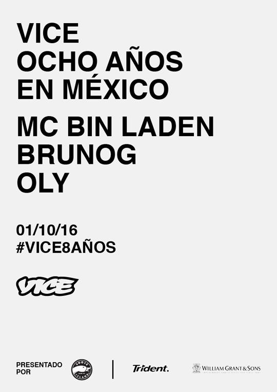 vice-8-flyer